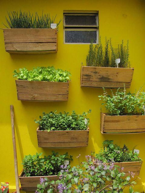 onde encontrar cerca para jardim:Como Fazer Horta Em Caixote