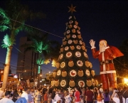Enfeites de Natal Luminosos (18)
